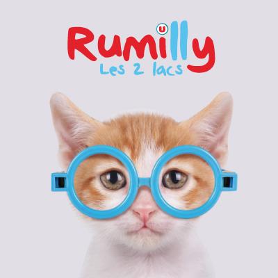 RUMILLYwebcarré